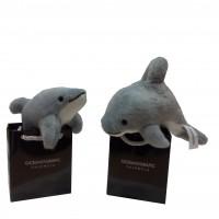 Delfín en Bolsa Oceanogràfic