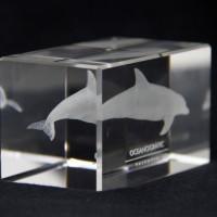 Metacrilato Delfín Oceanogràfic