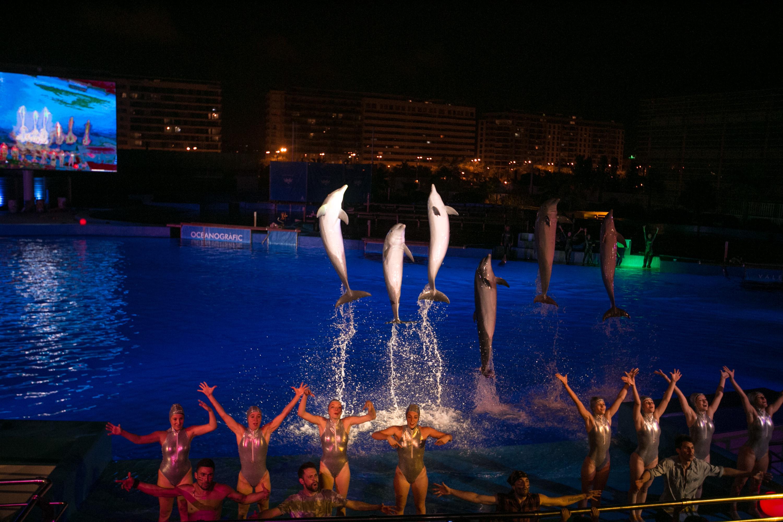 Nadadores, bailarines y delfines durante Las Noches