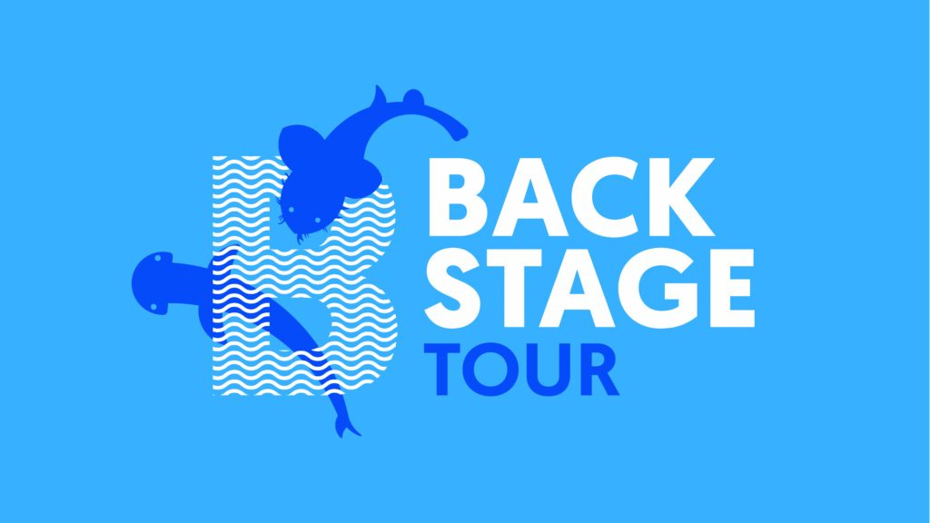 Backstage Tour – Behind the scenes tour